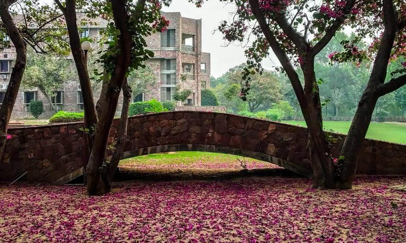 IIHMR Jaipur campus